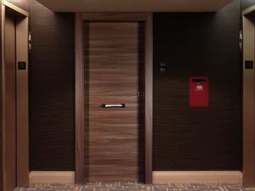 Security entrance doors